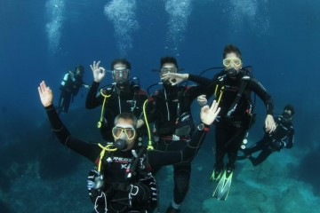 Diving vacation